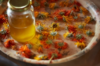 flower workshop - calendula