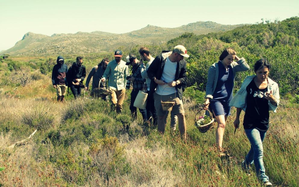fynbos forage