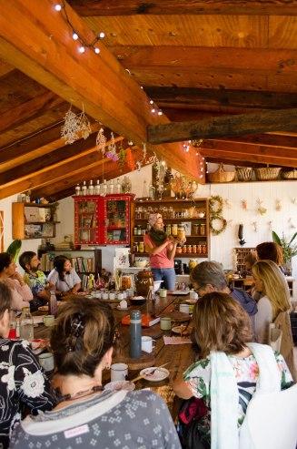Fermentation Workshops
