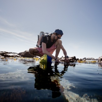 Coastal Foraging - photo credit Sacha Specker