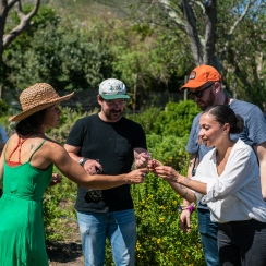 Guided tour of the cultivated wild herb garden